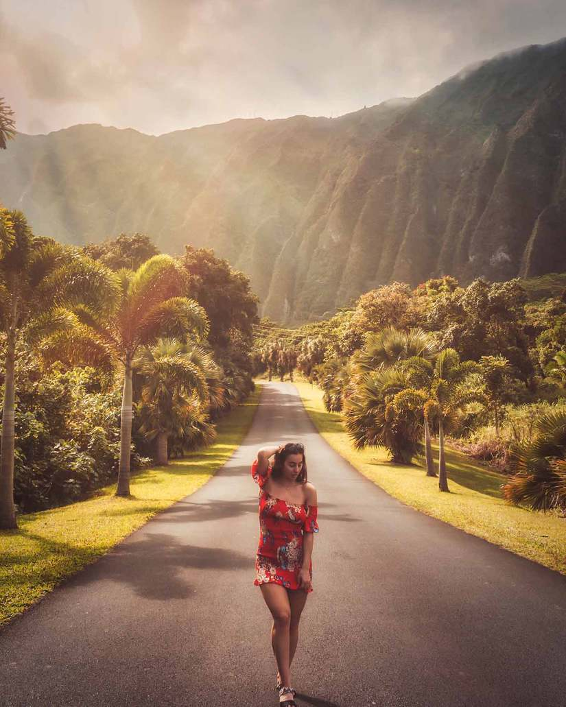 Ho Omaluhia Botanical Garden Oahu The Certified 2019 Guide