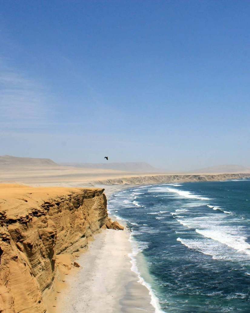 best things to do in huacachina paracas