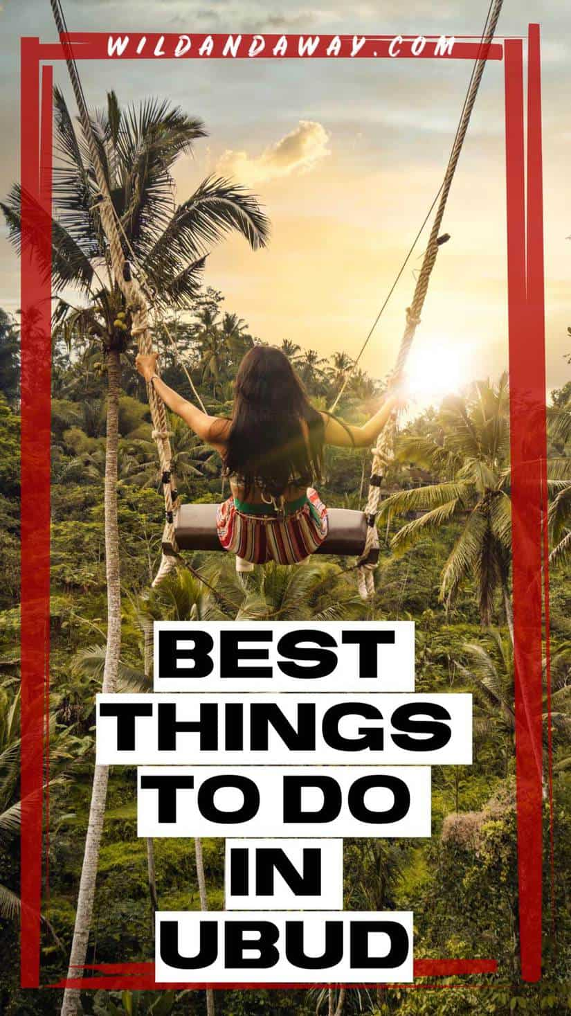 best things to do in ubud bali pinterest